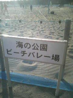 100130_150437.JPG